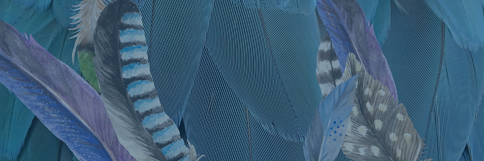 Feathers-blue.png
