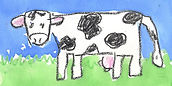 miniature_cows_spokane.jpg