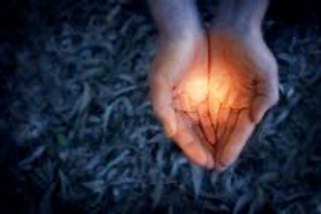 Hands with light.png