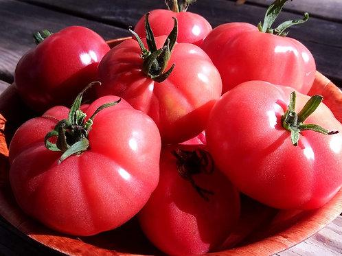 Pink Hathaway Tomato