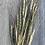 Thumbnail: Wild Red Einkhorn Wheat