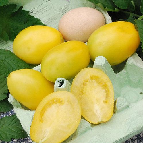 Ivory Egg Tomato