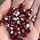 Thumbnail: Lady Bush Bean
