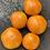 Thumbnail: Juniata Sunrise Tomato