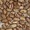Thumbnail: Cattaraugus Cranberry Bean