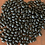 Thumbnail: Early Negro Bush Bean