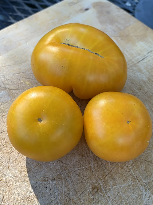 Warming Ice Tomato