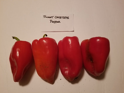 Sweet Ometepe Pepper
