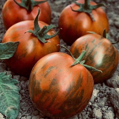 Dawson's Black Zebra Tomato