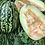 Thumbnail: Sesame Seeded Melon