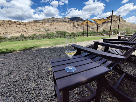 White Wine with a View.jpg