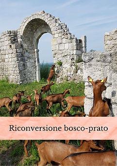 Riconversione Bosco - Prato.jpg