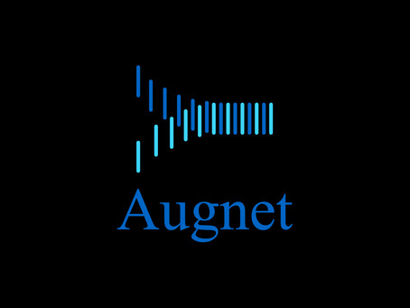 Introducing Augnet: What we do