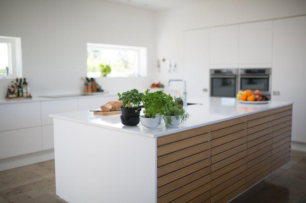 green-leafed-plants-on-kitchen-island-13