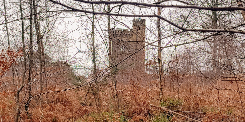 Leith Hill, tower,  woodlands , steep hillsand Waterfall - 18 kilometres day hike (1)