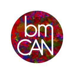 Blue MTNS Creative Arts Network