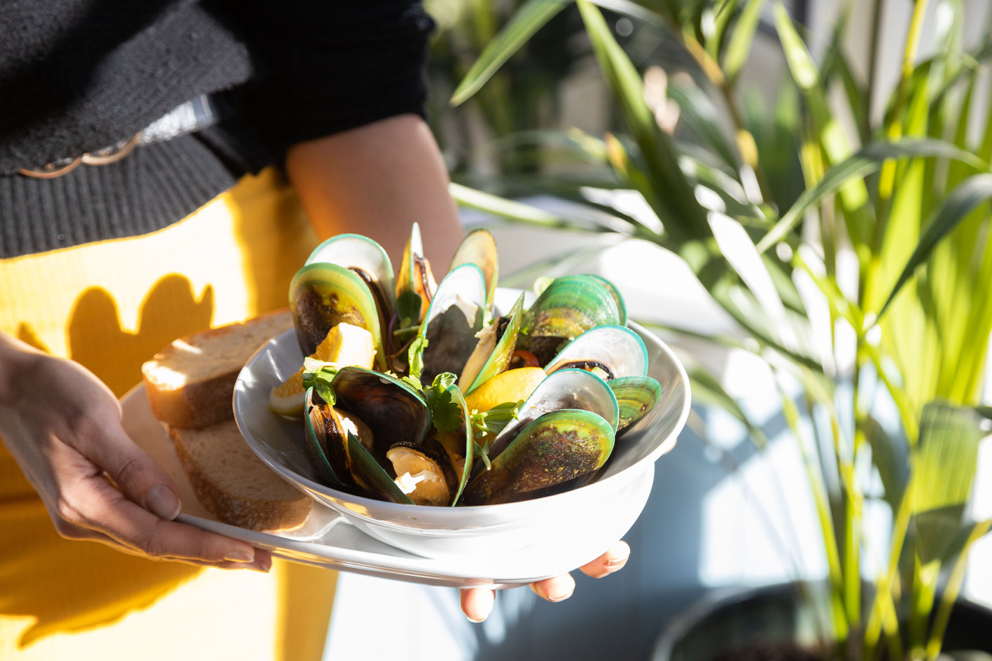 Aromatic Mussels