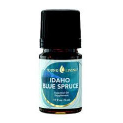 Blue Spruce 4th Dimension Healing