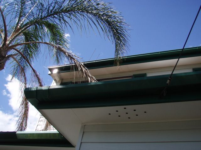 66c452 6da786b4f505436cbc3d952a774e15fb~mv2 - Asbestos eave removal what to expect on the day