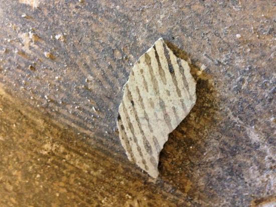 66c452 e11d4cc05e0043fab2257393a3830bff~mv2 - Asbestos glues and Vinyl floor tiles