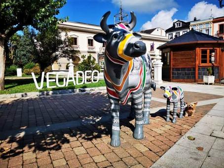 Celebrando el Día Internacional de los Monumentos y Sitios en Vegadeo.