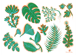 Tipos de hojas y ramas