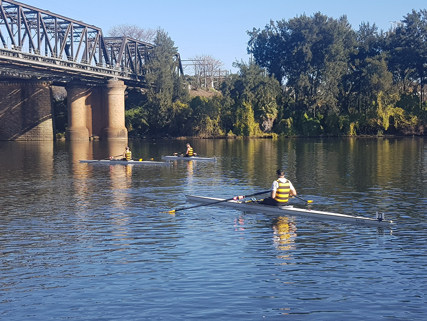 Scullers Head of Nepean 2 LR
