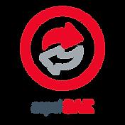 ASPEL-ICONO VERT_SAE.png