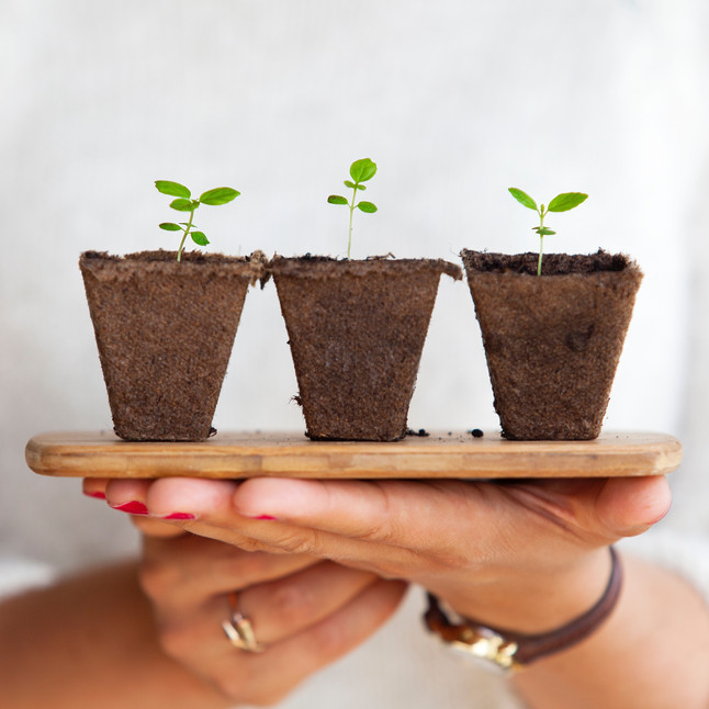 Sustainability Comes in Small Steps
