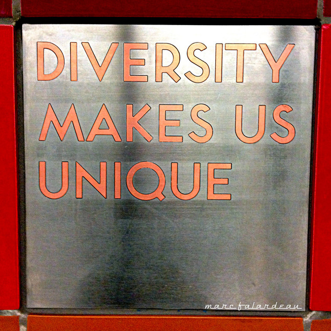 Improving Diversity & Inclusion in the Workplace