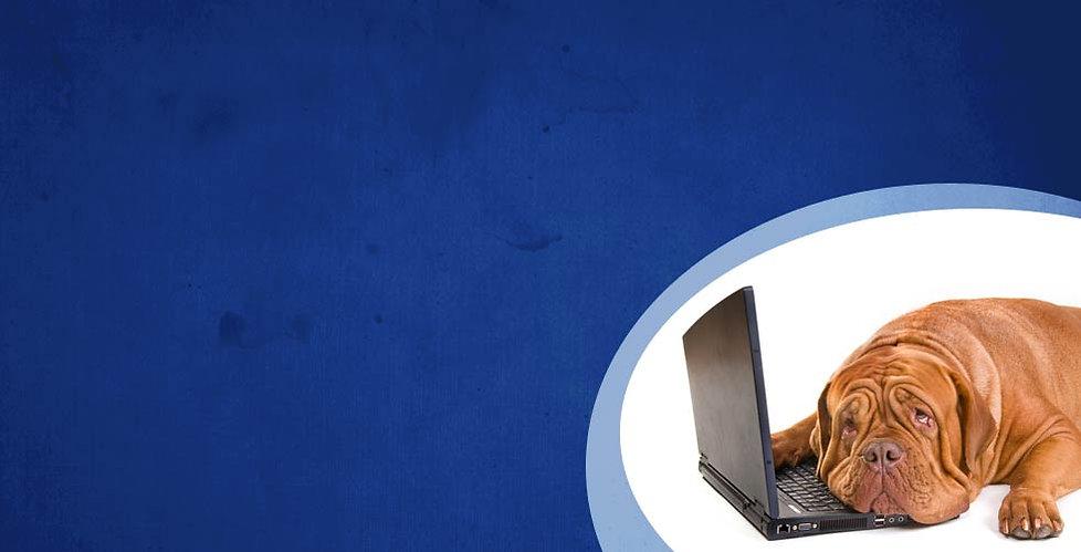 Schnelle Hilfe bei Viren, Würmern, Trojanern, Spyware, Adware, Malware, undsoweiter, usw.!