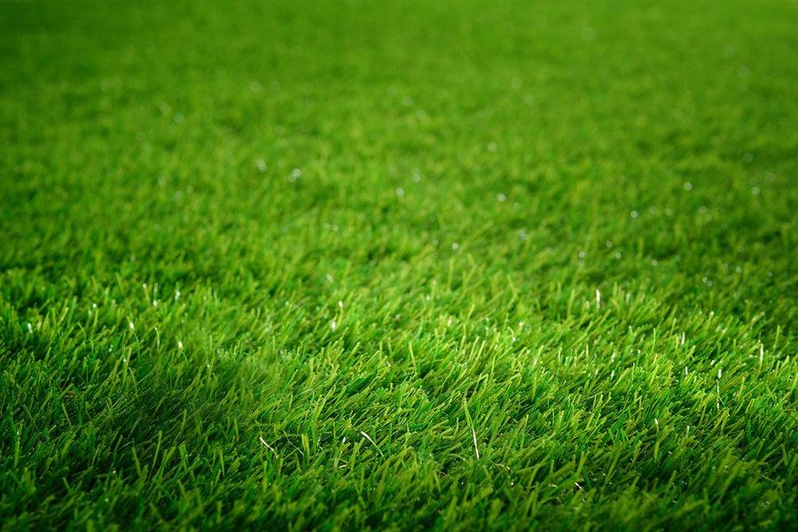 bg-golf-grass-B%20clear_edited.jpg