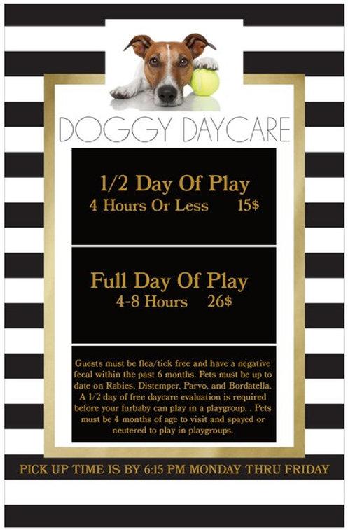 doggydaycare2020.jpg