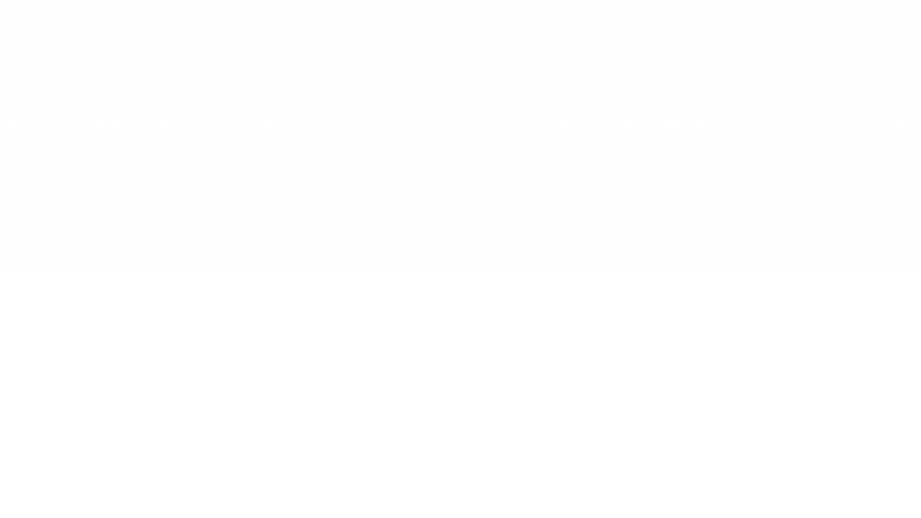fond blanc v2.png