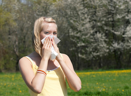 Bluesky's National Tree Map to Help Hay Fever Sufferers