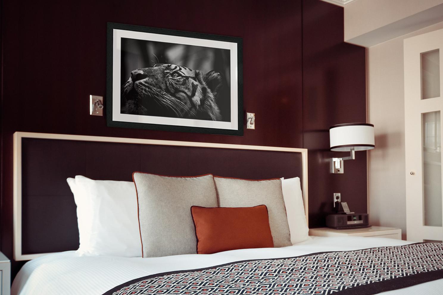 hotel-room-1447201_1920 Kopie.jpg