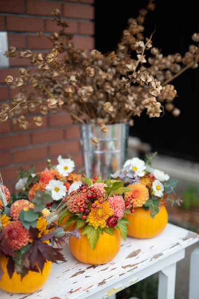 TFYFCo_ThanksgivingPumpkins-18.jpg