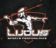 LUDUS.JPG