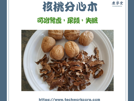 核桃分心木 | Walnut Inside Shell