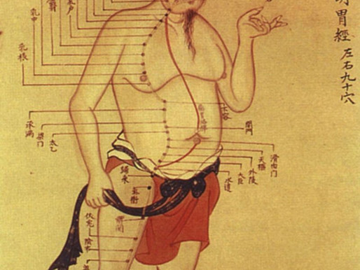 Featured Blog: Hidden Hong Kong: A history of traditional Chinese medicine