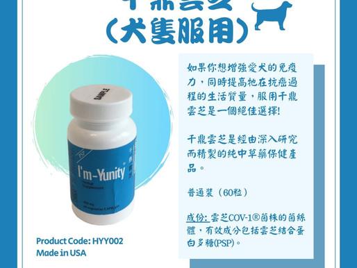 千鼎雲芝 - 犬隻服用 | I'm-Yunity Herbal Supplement for Dog Use