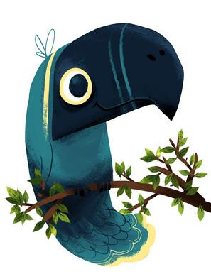 096_birds.jpg