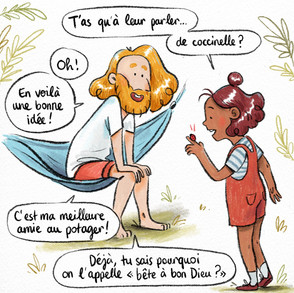 AudreyLainé_Permaculture_Coccinelle_02.