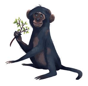 136_monkeys.jpg