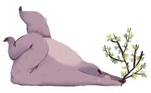 066_koala.jpg