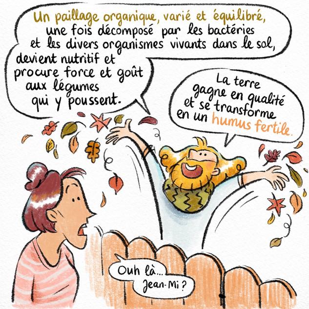 AudreyLainé_Permaculture_Paillage_05.jpg