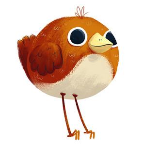 097_birds.jpg