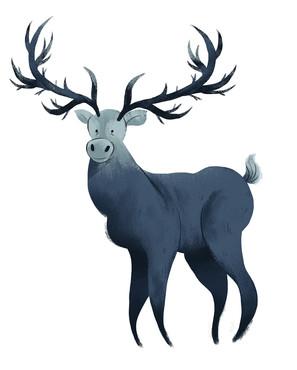 246_reindeer.jpg