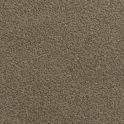 W244 - Sand