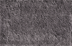 O486 - Sunflower Seed